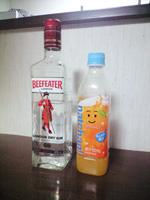 Gin_natchan