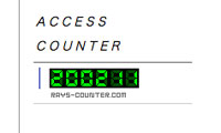 Access Counter